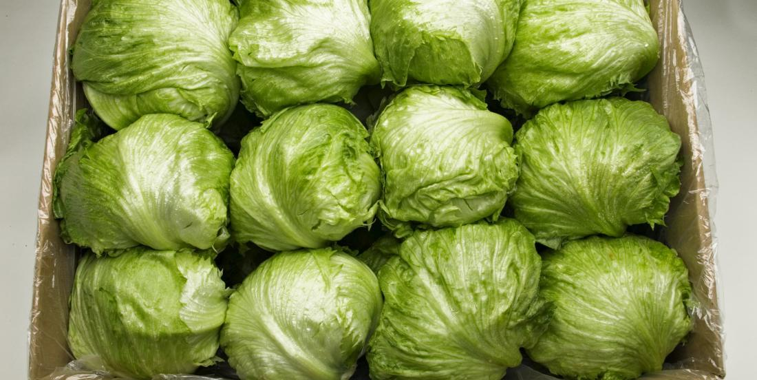 Is iceberg lettuce actually good for you? Here is the opinion of a nutritionist on this unloved vegetable.