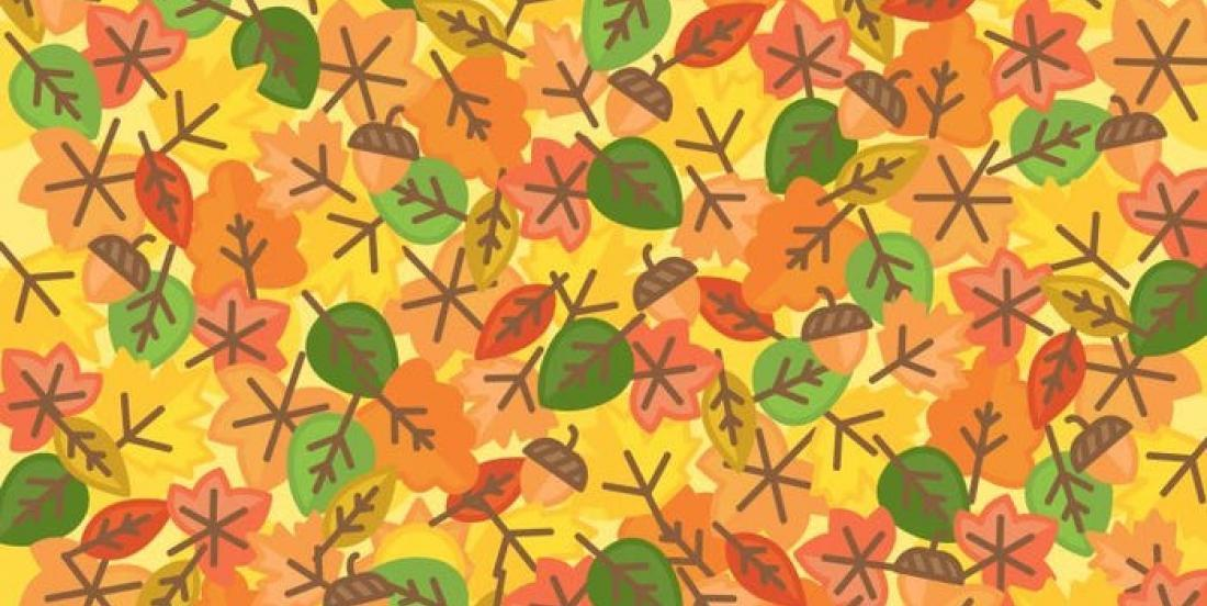 Fall brainteaser: Can you spot the sun among all these leaves?